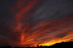 Sunset 3 5 19 #18 (Az Skies Photography) Tags: sun set sunset dusk twilight nightfall sky skyline skyscape rio rico arizona az riorico rioricoaz arizonasky arizonaskyline arizonaskyscape arizonasunset cloud clouds red orange yellow gold golden salmon black march 5 2019 march52019 3519 352019 canon eos 80d canoneos80d eos80d canon80d