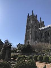 Bishop's Garden, National Cathedral (KFiabane) Tags: nationalcathedral washingtondc bishopsgarden