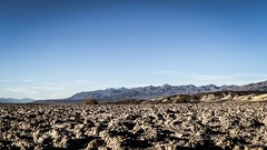 Desert flatlands (nderek58) Tags: cactus california deathvalley hiking nature desert