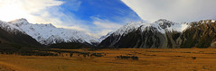 Middle Earth (Matt Champlin) Tags: travel life nature landscape hike hiking adventure newzealand mtcook np national park mountains amazing alpine snow winter cold chilly pano canon 2018 exotic incredible