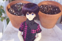 [031/365] Ken (Ise-Bandit) Tags: abjd bjd asian ball joint doll dollfie resin volks ken