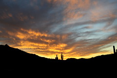 Valley of the Sun (jeffr71) Tags: sunset arizona southmountain cactus saguaro valley mountain clouds