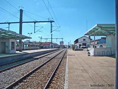 Estação de Comboios de Castelo Branco (Sofia Barão) Tags: portugal beira baixa castelo branco