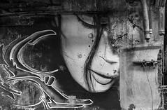 Graffiti - Lost Place (Leica Monochrome) Tags: lostplaces kunst blackandwhite bw blackwhite bodensee fotopark galluspictures gallus hair leica leicafriend leicafotopark monochrome monochrom summicron neuerfotopark ostschweiz pictures reise street schwarzweiss streetfotografie schweiz streetphotograpy streetphoto