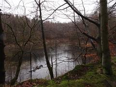 Lake Erlenloch (3)