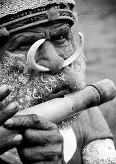 Man Playing Flute During Mt Hagen Sing Sing, Western Highlands, Papua New Guinea. (Eric Lafforgue) Tags: artscultureandentertainment bamboo beard blackandwhite day decoration festival flute headdress highlands img4093 indigenousculture jewellery makeup matureadult mounthagen mthagen nosepiercing oneperson outdoors papuanewguinea pigtusk tourism traditionalclothing tribal tribe vertical singsing ceremony