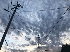56/365 (moke076) Tags: 2019 365 project 365project project365 oneaday photoaday mobile cell cellphone iphone cloud clouds sky evening sunset telephone power poles electric graphic lines