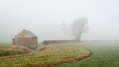 foggy field (kimbenson45) Tags: architecture barn brown building curve curved curves farm fence field foggy green hut mist misty nature outdoors shed tree wall white