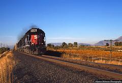 Rack Train and the Pumpkin Patch (jamesbelmont) Tags: southernpacific oansf autos rack pumpkin pumpkinpatch riverton utah draper railway sd40m2 mk emd