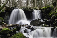 (Crofter's) Tags: water waterfall watertrails waterfalls stream green leaves moss forest forestofmarch times frozentimes trees tree walkingthroughtheforest walk white deepwhite shadows longexposure ndfilter tripod sony sonya sonyalpha sonyalpha77ii sony1650 sony1650mm wildlands wildlandspictures