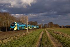 """[DE] Woltorf, 19.03.2019 - ET603 """"WFB"""" nach Rheine (Frederik L.) Tags: db bahn zug eisenbahn train privatbahn stadler kiss peine bahnhof schiene gleis hannover"""