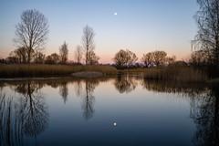 Reflet de lune (yllup35) Tags: lune reflet étang crépuscule