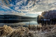 Winterwonderland (Andi Fritzsch) Tags: winterwonderland winter snow water dam tree cold erzgebirge landscape landscapephotography sun