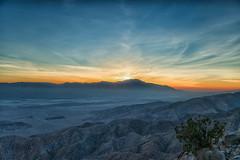 untitled (6 of 28).jpg (xen riggs) Tags: desert california joshuatreenationalpark february2018
