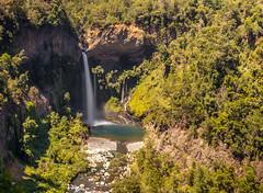 EL Velo de la Novia, Radal Siete Tazas, Chile (Mario Rivera Cayupi) Tags: wood water waterfall tree landscape chile velodelanovia turismo descanso placer vista canon80d sigma1835mmf18art