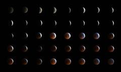 once in a blood moon (Christopher Burdon) Tags: photoshop 200mm legacylens f4 minoltarokkor sonya7rii timelapse january2019 bloodmoon westlondon ealing