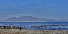 Table Mountain (Regina Valim) Tags: mountains tablemountain robbenisland capetown southafrica
