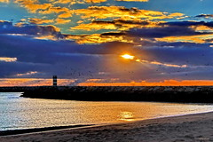 Algures por aqui (Zéza Lemos) Tags: portugal praia puestadelsol pordesol gaivotas algarve areia aves água ave asas canon céu contraluz ciel vilamoura sunset sol surf mar ondas oceano