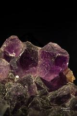 cristalli di Ametista - italy (MBorsatto61) Tags: ametista macro ef100mmf28macrousm cristalli minerali canon eos6d ametyst macrounlimited アメジスト amatista améthyste mineraux rock rocks
