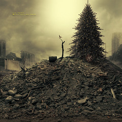 The past and the present (olgavareli) Tags: olga vareli post war peace winter cold christmas tree bird present debris city destruction lonely