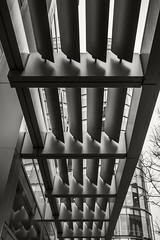Boston Hotel Awning (frntprchprss) Tags: awning boston hotel city abstract lookingup urban jamesgehrt blackandwhite