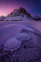 Frost (Piriya Pete Wongkongkathep) Tags: bow lake alberta winter banff mountain canada snow
