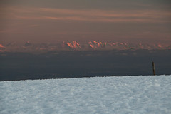 Vue sur les Alpes Bernoises (Gisou68Fr) Tags: lemarkstein hautrhin alsace france grandest hiver winter snow neige montagne mountain alpes alps alpesbernoises coucherdesoleil sundown dusk crépuscule 68