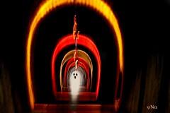 Le fantôme du Tunnel de l'Aven de Tessonn sur la balade du viaduc de Lavassac (ynatentive) Tags: voies lelongdesvoies yna canon700d architecture paysagedefrance occitanie fierdusud ghost light poselongue longexposure nightphotography photographiedenuit