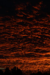 Sunset 11 29 18 #64 (Az Skies Photography) Tags: sun set sunset dusk twilight nightfall sky skyline skyscape rio rico arizona az riorico rioricoaz arizonasky arizonaskyscape arizonaskyline arizonasunset cloud clouds red orange salmon yellow gold golden black skyfire canon eos 80d canoneos80d eos80d canon80d november 29 2018 november292018 112918 11292018