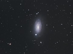 M63-C9-ASI1600MCc_20190328 (frankastro) Tags: m63 messier63 astronomy astronomie astrophotography galaxy galaxie