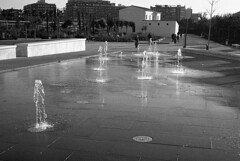190104_Parc_Central_023 (Stefano Sbaccanti) Tags: bw blackandwhite bn parccentral valencia minox35gl kentmere400 bellinihydrofen analogicait analogue analogico argentique spain spagna selfdeveloped 2019 city