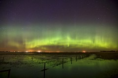 Spring Greens 2014 (John Andersen (JPAndersen images)) Tags: alberta aurora canon fencefarm irricana night pond spring stars