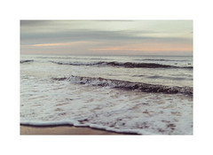 Waves of silence (gerritdevinck) Tags: seaview sealive northsea belgium belgie beachlife beautifullight noordzee beach belgiumcoast dof bokeh waves golven strand sea beachview beachphotography canon5dmarkiii ef50mmf12lusm silence oostduinkerkebad koksijdeoostduinkerke koksijde gerritdevinckfotografie gerritdevinck
