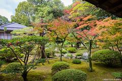 Daikakuji Temple, Arashiyama, Kyoto (Christian Kaden) Tags: daikakuji j2015 japan kansai kioto kyoto tempel temple お寺 京都 仏教 仏閣 大覚寺 日本 関西