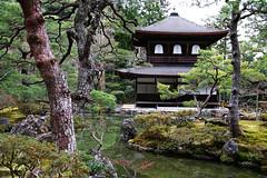 SDQ_1272 (koyaman3422) Tags: 京都 kyoto sigma sdquattro 1770mm