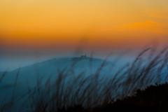 Korrigan View (yann2649) Tags: finistere montdarrée celtic korrigan bottomview stmichel braspart brittany fog foggy matin sunrise mist misty france europe orange chaudetfroid coldandwarm
