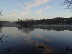 Tranquility (Phil Gayton) Tags: water meadow grass tree frost sky cloud landscape scenery tranquil serene reflection snipe island river dart totnes devon uk