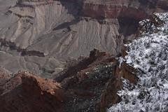 IMG_8654 (patterpix) Tags: grandcanyon arizona snow trees winter canyon storm