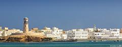 Oman, Sour, port de Sour (cedric.cain29) Tags: cédriccaïn oman sour portdesour