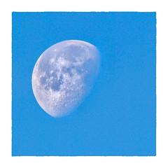 Morning Moon (Timothy Valentine) Tags: clichésaturday 0119 waninggibbous moon 2019 home sky eastbridgewater massachusetts unitedstatesofamerica usa