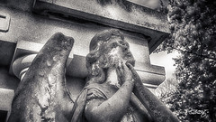 Angel's Lament (dougkuony) Tags: hdr holysepulcrecemetery angel bw blackwhite blackandwhite cemetery holysepulcre mono monochrome sculpture