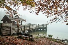Slovenia`s Autumn Mist. (daveknight1946) Tags: slovenia mist autumn pier lake seat bench greatphotgraphers