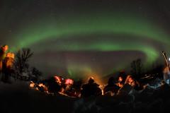 Tromsö 2019 (252 von 699) (pschtzel) Tags: nordlicht norwegen2019 tromso