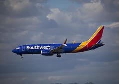 N8731J Boeing 737-8 MAX Southwest Airlines (corkspotter / Paul Daly) Tags: n8731j boeing 7378 max b38m 42550 7321 l2j ac03ff swa wn southwest airlines 2018 n1796b 20181220 klax lax los angeles