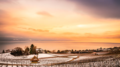DEAR SWITZERLAND, YOU ARE SO BEAUTIFUL (Jeton Bajrami) Tags: sunset sun sky clouds winter snow lake leman landscape colors perfect art 2019 sony alpha a7ii markii switzerland vevey vaud travel