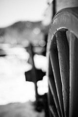 Party Like the Donners (belleshaw) Tags: blackandwhite oakglen losriosrancho wagon wheel spokes wood snow winter travel cold antique detail abstract