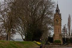 Quarter past One (supertrev22) Tags: canoneos5dsr ef2470mmf28liiusm canon clock clocktower daffodills memorial riverbank spring