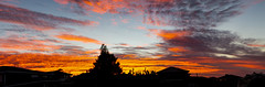 Fire (Greenstone Girl) Tags: red sunrise clouds dawn orange soft purple branches silhouette pink panorama