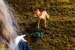 Cat-Flickr.jpg (small_life_stories) Tags: 3dstorytelling miniatureadventure toyadventure miniaturephotography photographicnovel miniature graphicnovel onourown clay toyphotography toy photostory cats photonovel