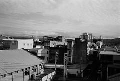 新埔_42 (Taiwan's Riccardo) Tags: 2019 taiwan 135film negative fujifilmacros100 bw plustek8200i nikon35ti ps nikonlens nikkor fixed 35mmf28 新竹縣 新埔